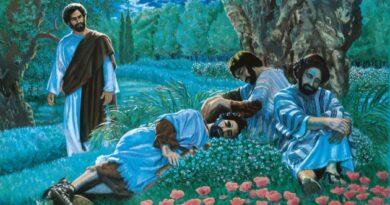 PALABRA DE DIOS VIERNES DE LECTURA de la profecía de Joel (1,13-15;2,1-2)