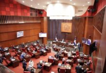 Diputados aprobaron préstamo por 115 millones de dólares para «mejorar conectividad»